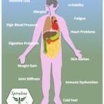 spirulina detox